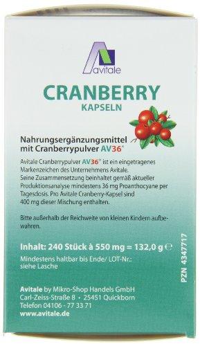 Avitale Cranberry Kapseln 400 mg, 240 Stück,  1er Pack (1 x 132 g) - 2
